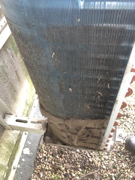 erstes grobes Abkehren vor dem Ausblasen des Wärmetauschers